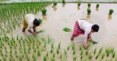 छग में खेती-किसानी के लिए मिलेगा 4600 करोड़ रूपए का ऋण