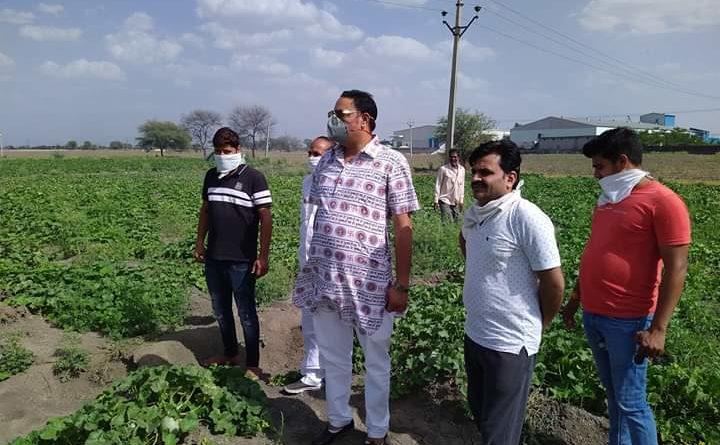 मध्य प्रदेश : सब्ज़ी किसानों को भारी नुकसान
