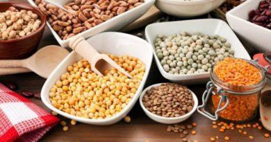 छत्तीसगढ़ : राज्य में दलहन-तिलहन और मक्का की खेती को बढ़ावा देने का विशेष अभियान