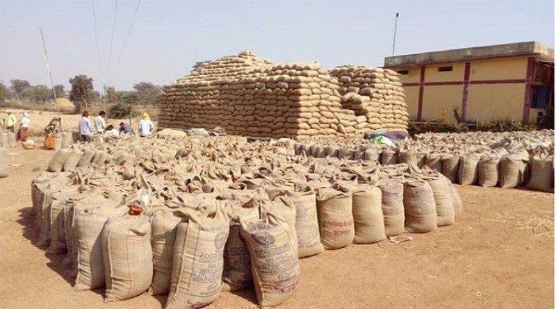 मध्यप्रदेश में एक दिन में रिकॉर्ड 5 लाख मीट्रिक टन गेहूं उपार्जन