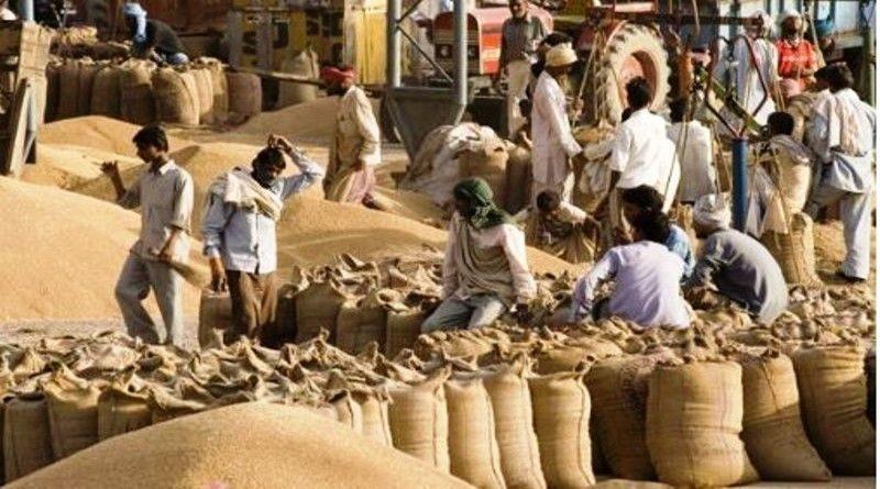 मध्य प्रदेश : गेंहू ख़रीदी के 2420 करोड़ रूपए किसानों के खाते में
