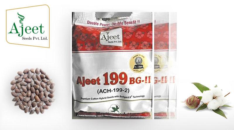 ajeet seeds