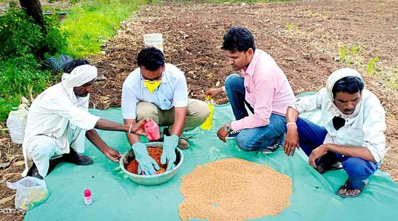 seed treatment