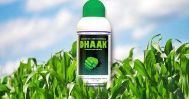 धाक Dhaak