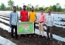 गांव की मिट्टी की खुशबू विदेश से खींच लाई नलखेड़ा के रामपाल को