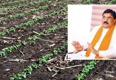 किसानों को समय पर कृषि आदान मिलना चाहिए : श्री पटेल