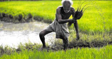 अध्यादेशों ने अकेला कर दिया किसान को
