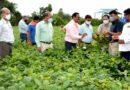 कृषि वैज्ञानिक एवं अधिकारियों ने किसानो को आवश्यक तकनीकी सलाह दी