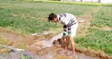 कृषि में जल का जलवा