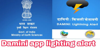 Damini app