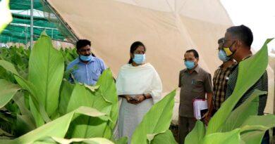 आधुनिक कृषि तकनीक से मिर्च के किसान ने कमाए 1 करोड़ 18 लाख रु.