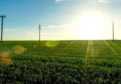 नीमच में कृषक-वैज्ञानिक परिचर्चा में भाग लें