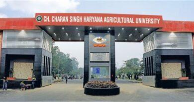 choudhary charan singh university
