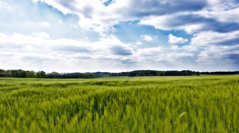 कृषि आदान विक्रेता संघ ने ज्ञापन सौंपा