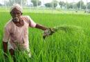 प्रधानमंत्री किसान मानधन योजना का लाभ कैसें उठाए किसान – जानिए