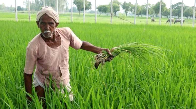 प्रधानमंत्री किसान मान धन योजना में पंजीयन की अपील
