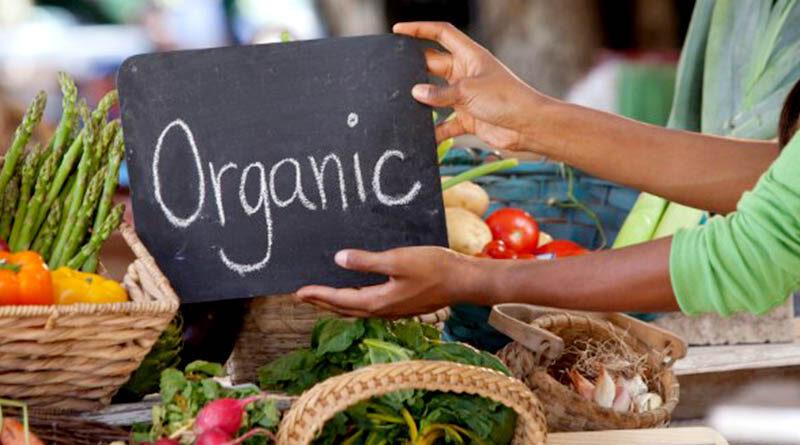 organic food procesing