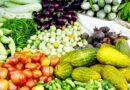सब्जी उत्पादन का विकास लाभकारी खेती का आईना
