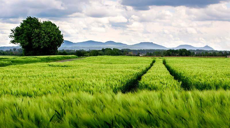 खेती संबंधी अनुबंध की कॉपी तहसीलदार को देना जरूरी