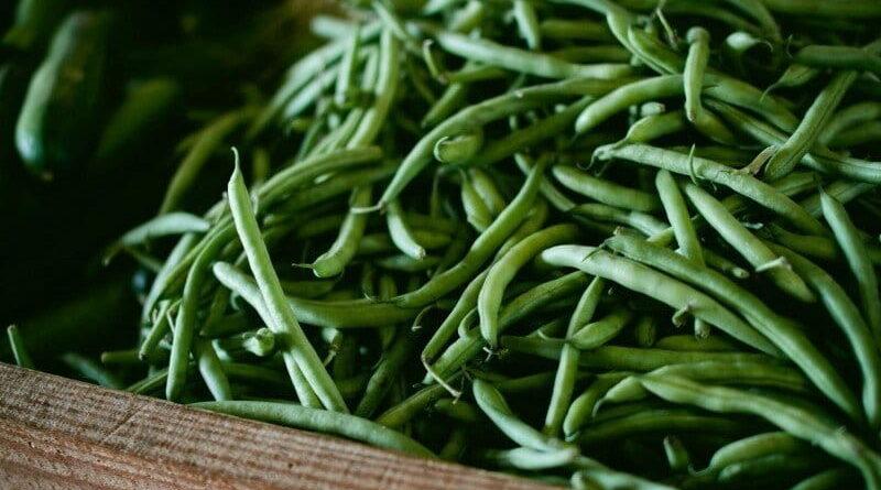 सब्जी -फलों के न्यूनतम मूल्य तय करने में केरल सरकार अव्वल