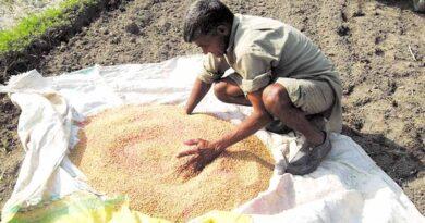 seeds treatment