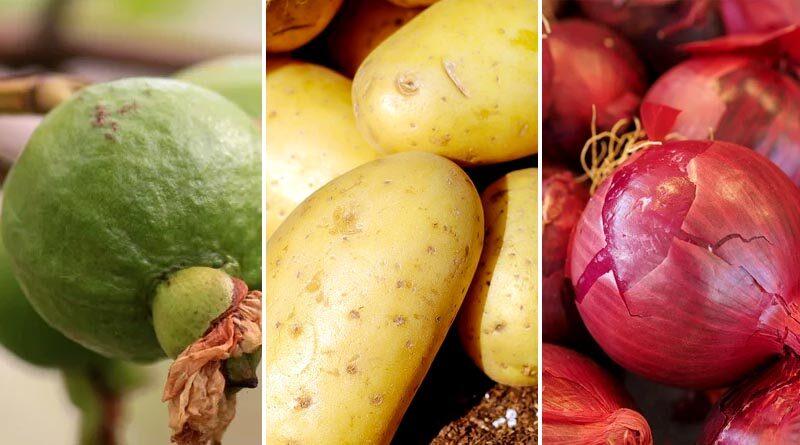 guava potato onion