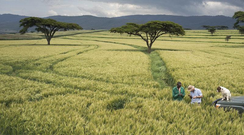 कृषि मैकेनाइजेशन 10 साल में दोगुना करने का लक्ष्य