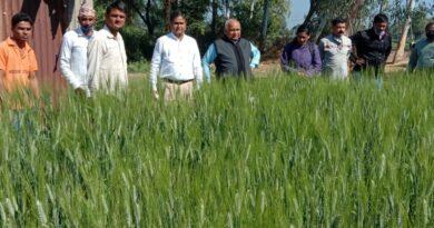Wheat Demo Visit 1