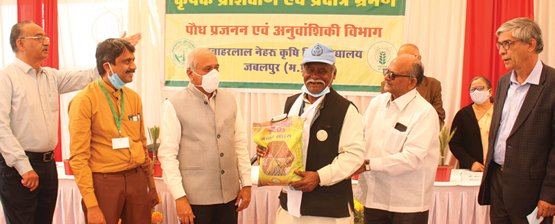 Advanced paddy seeds distributed to farmers