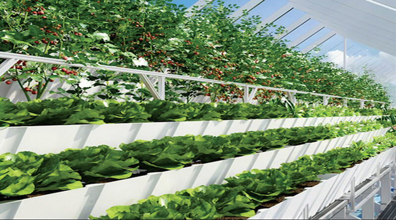 कृषि का भविष्य : स्मार्ट खेती