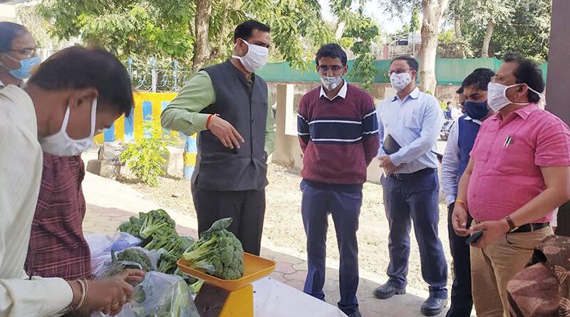 Organic vegetable market ready