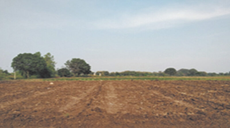 Mole drainage system for temporary waterlogged site