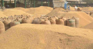 Purchased a record 647 lakh metric tonnes of paddy