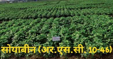कृषि विश्वविद्यालय रायपुर द्वारा विकसित फसलों की 12 नई किस्मों को भारत सरकार की मंजूरी