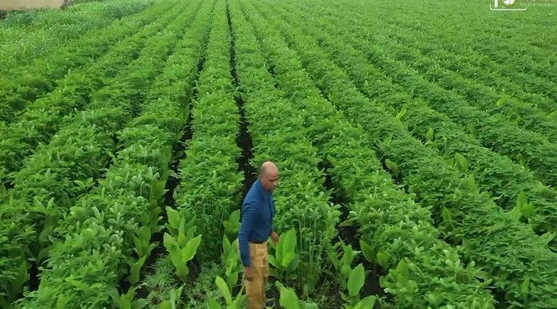 जैविक खेती ने खोले कृषक लेखराज के लिए उन्नति के द्वार