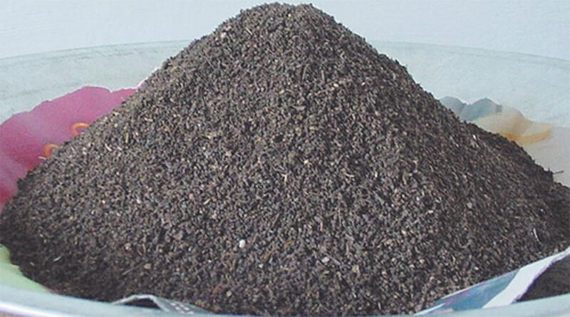 How to make manure from earthworms