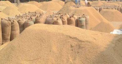 wheat storage