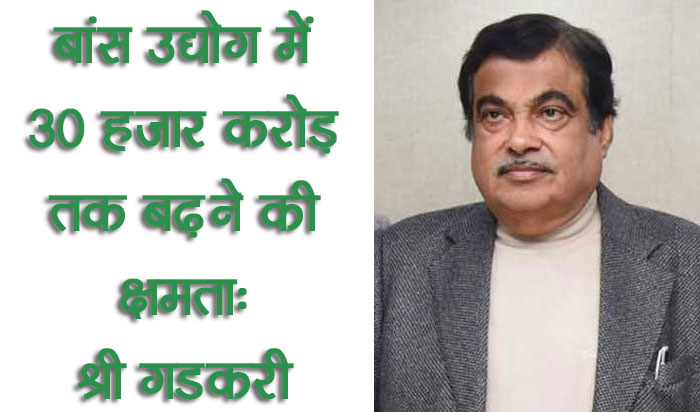बांस उद्योग में 30 हजार करोड़ तक बढ़ने की क्षमता : श्री गडकरी
