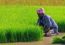 farmers-yojna1