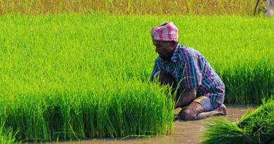 मध्य प्रदेश सरकार भरेगी किसानों का बीमा प्रीमियम
