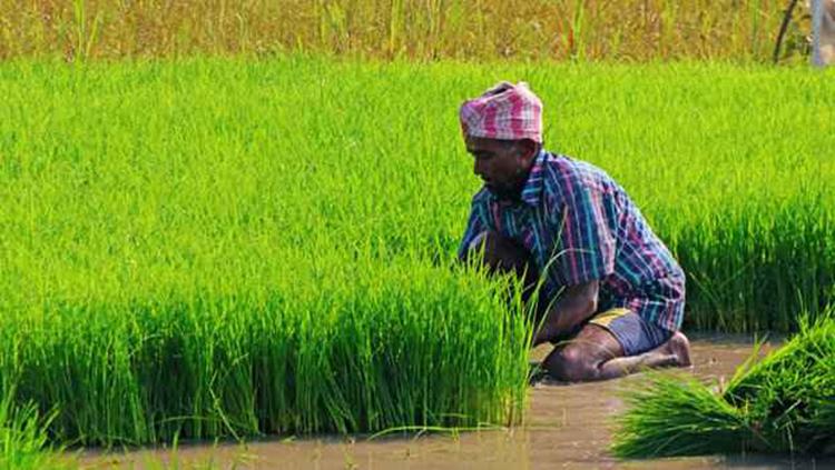 किसानों को सटीक खेती के बारे में कौन बताएगा ?