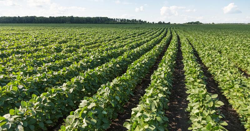 modern-farming1
