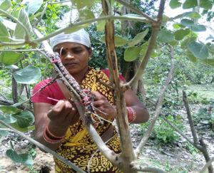 Lakh-crop1
