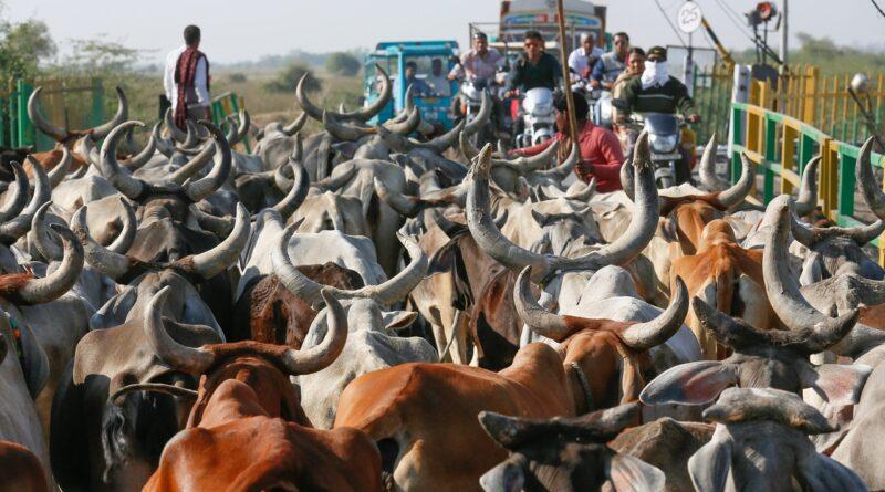 गांवों को कोरोना संक्रमण से बचाएं