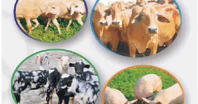 अतिरिक्त आय के लिये किसान पशुधन बीमा योजना लागू