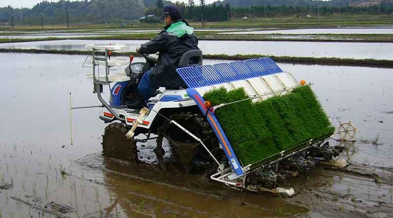 पैडी ट्रांसप्लांटर किसान मांगेगा, अनुदान पर उपलब्ध  हो जायेगा, कृषि यंत्रों का कोटा जारी