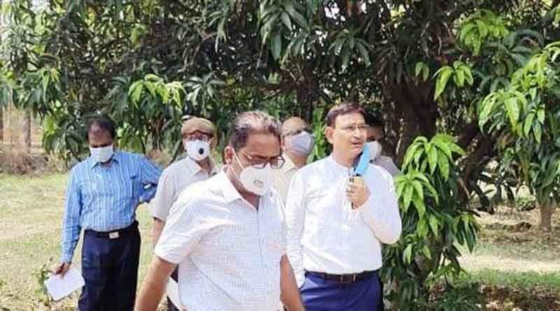 रायपुर कृषि विश्वविद्यालय में विकसित छत्तीसगढ़ आम की नई किस्में किसानों को मिलेंगी