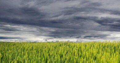 कृषि एवं संबंधित क्षेत्रों में स्टार्टअप स्थापित करने का सुनहरा अवसर