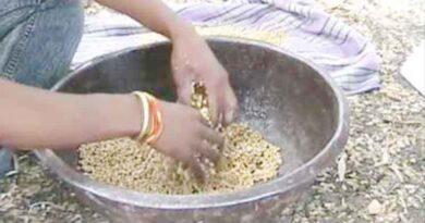 KJ INDORE AttachmentsJun 21, 2021, 4:28 PM (2 days ago) to me, kl, sachin Translate message Turn off for: Hindi बीजोपचार के प्रति किसानों में जागरूकता बढ़ी