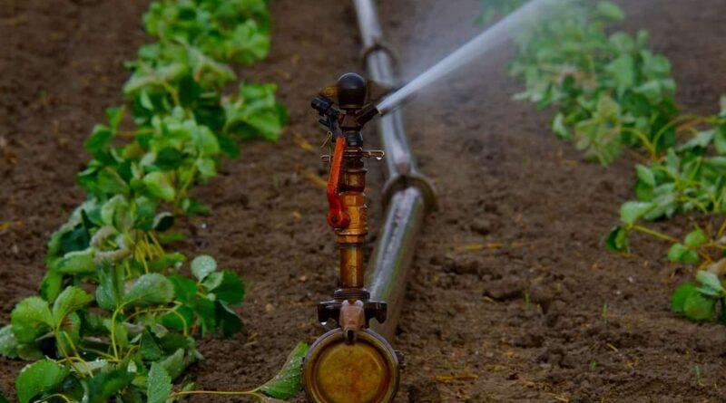 किसान  पाइप, स्प्रिंकलर, पम्प सेट के लिए 4  जुलाई तक आवेदन कर सकेंगे